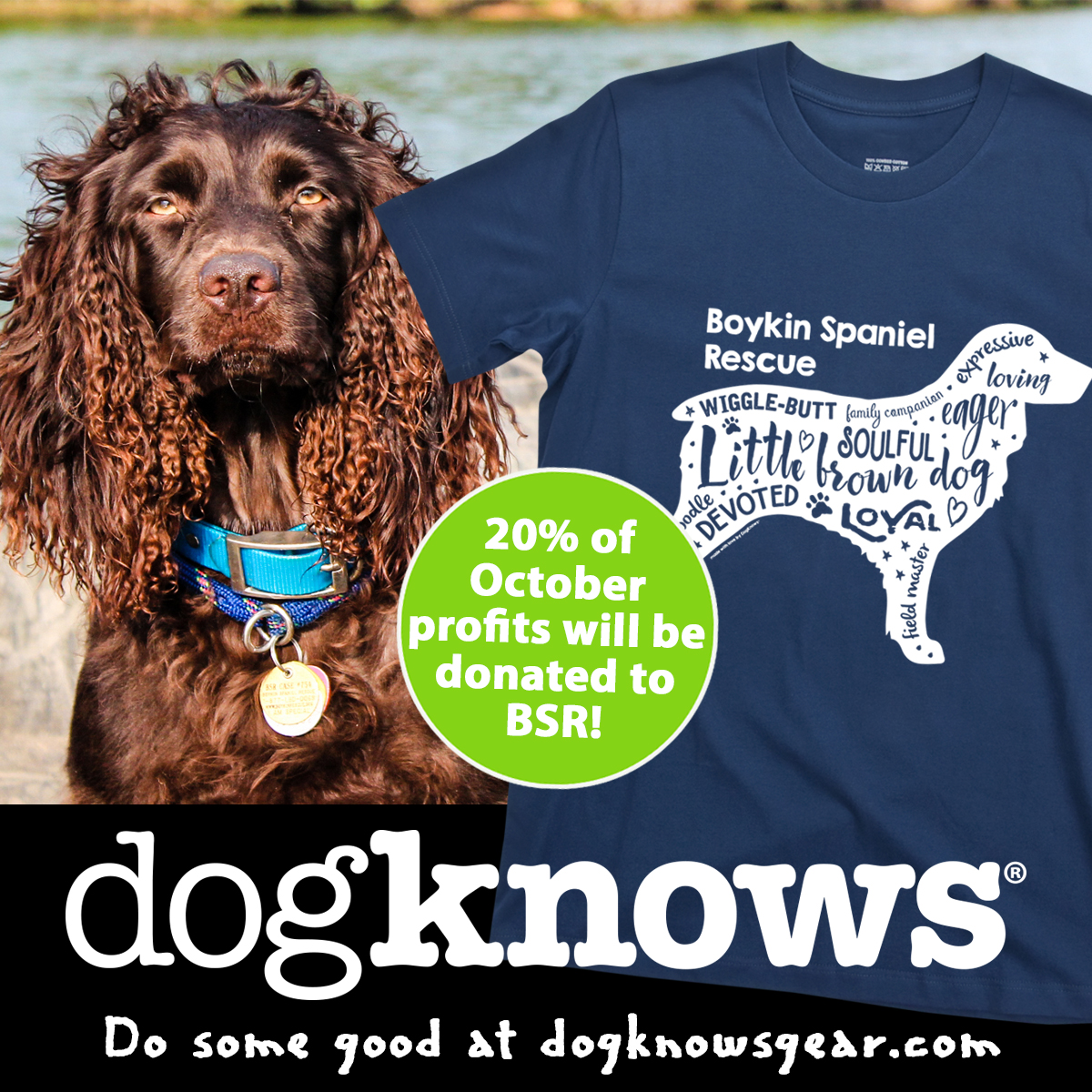 DogKnows Do Good: Rescue of the Month